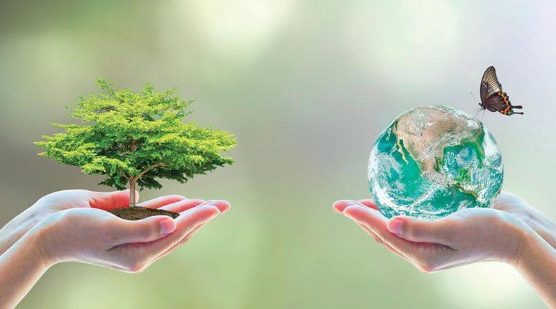 Conocer la diversidad ambiental desde la mirada de la complejidad